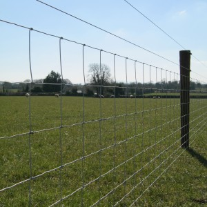 Sheep Wire With Electric Wire Frs Fencing