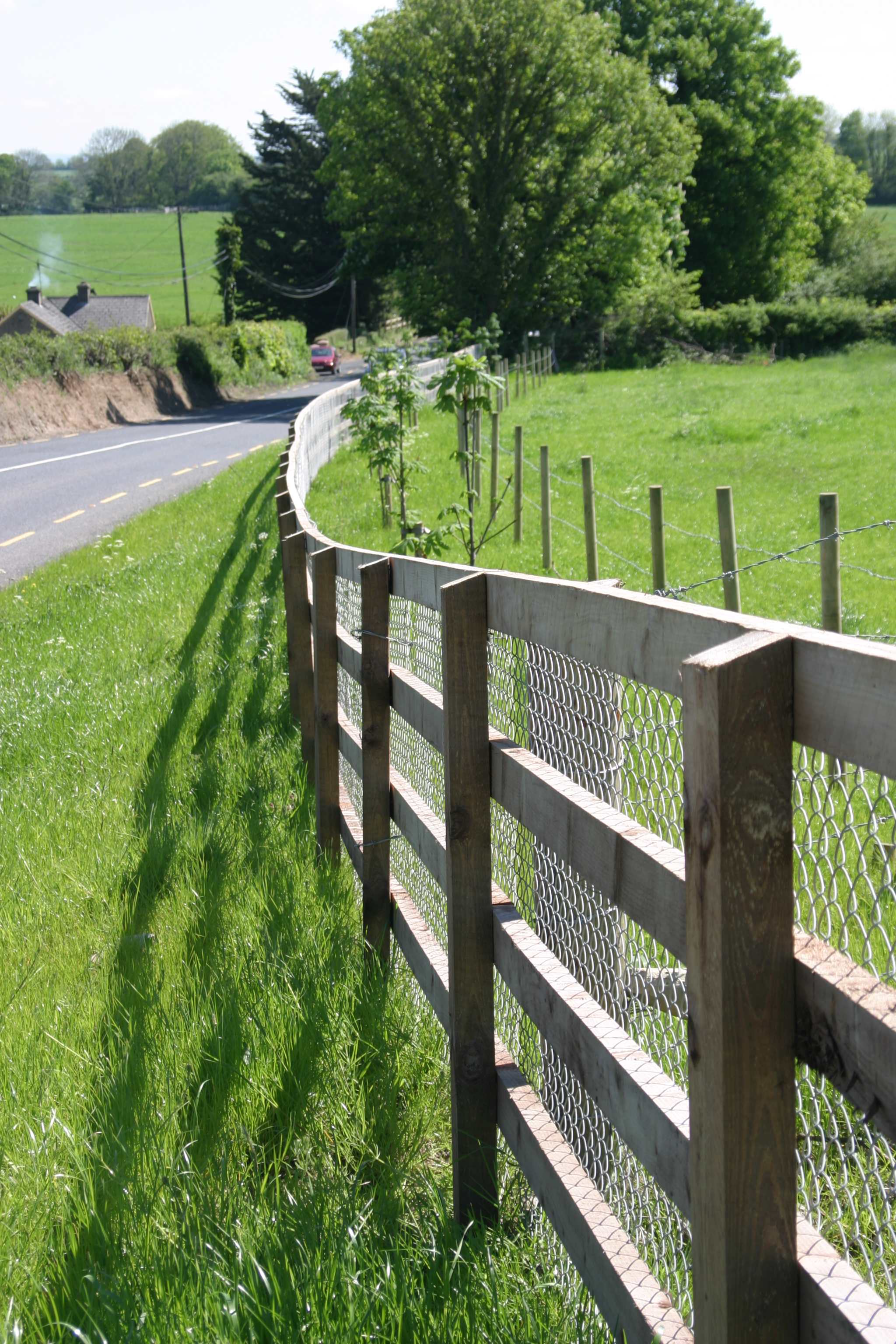 Article: Top ten Tips for Preparing the paddocks and making the most out of early grass in spring