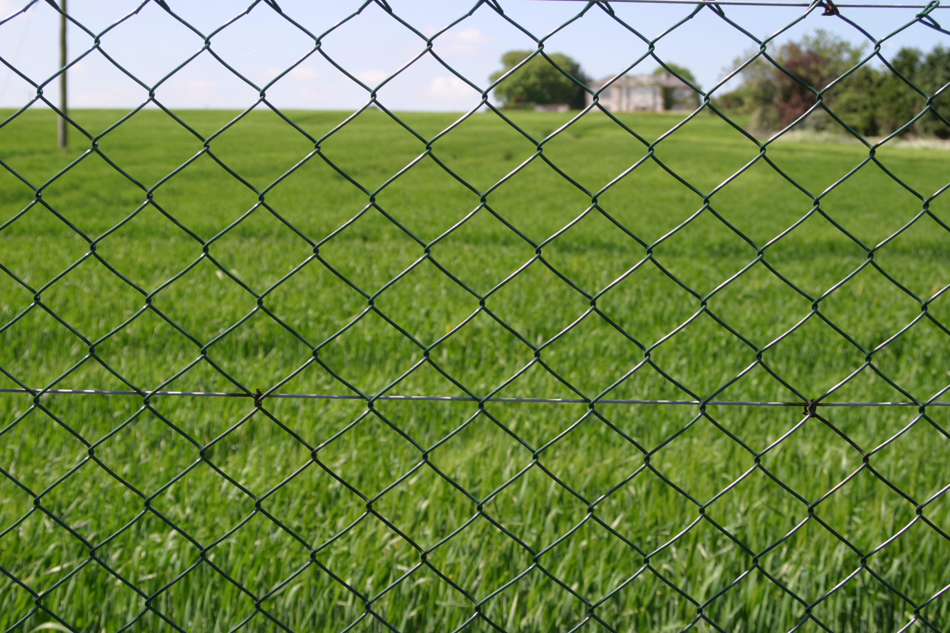 Chainlink on galvanised posts frs fencing